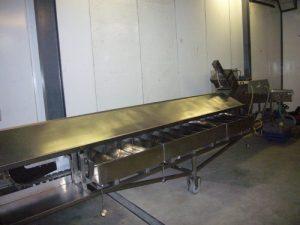 Asparagus Grading Systems