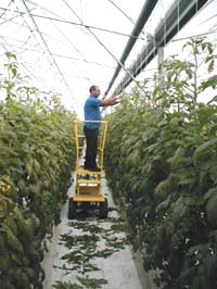 Greenhouse Machines